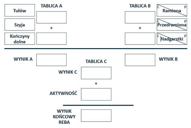Schemat postępowania podczas stosowania metody REBA