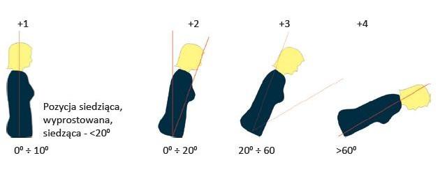 Wskaźniki obciążenia tułowia - Metoda RULA