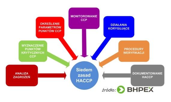 Siedem zasad HACCP podczas wdrażania systemu