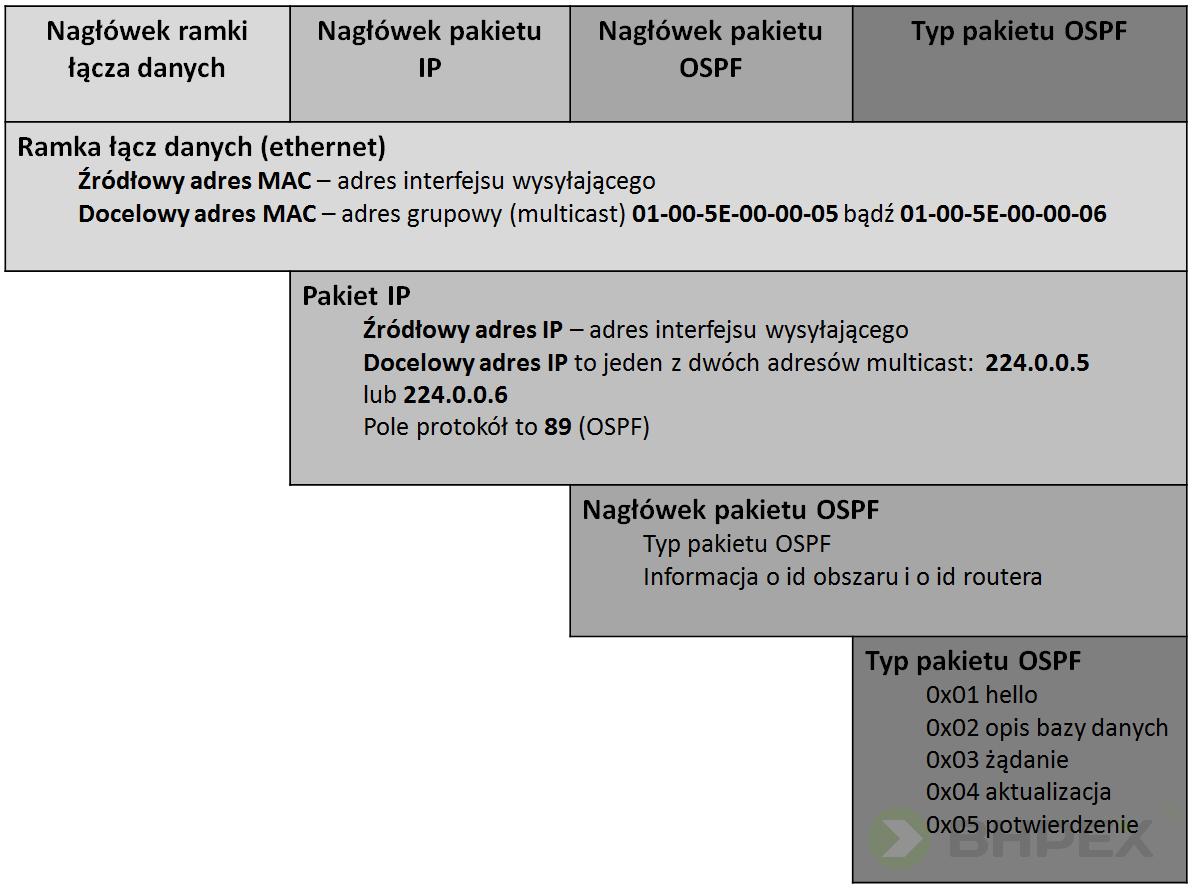 hermetyzacja pakietów OSPF