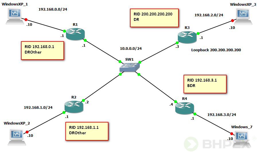 protokół OSPF topologia