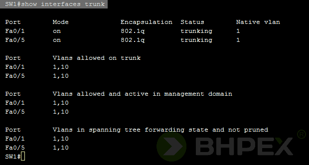 show interfaces trunk