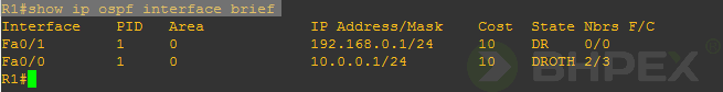 show ip ospf interface brief