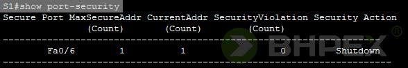 show port-security